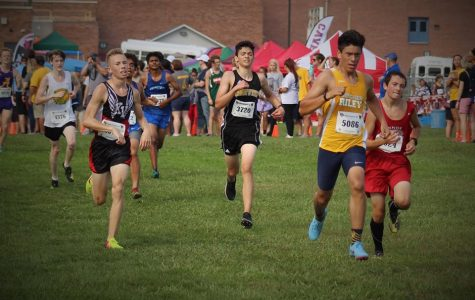 Cross Country Runs At New Prairie Invitational